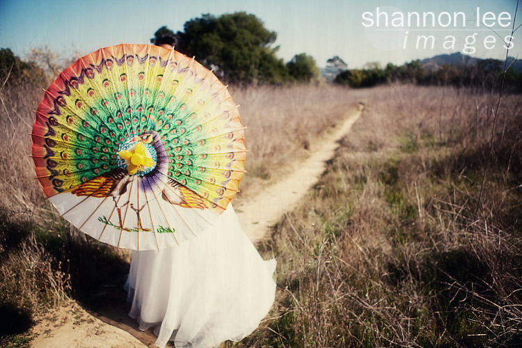 parasol photography