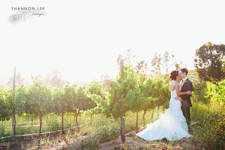 there arent even words to describe how much we love photographing winery weddings especially with a couple this amazing and when they choose a venue is as