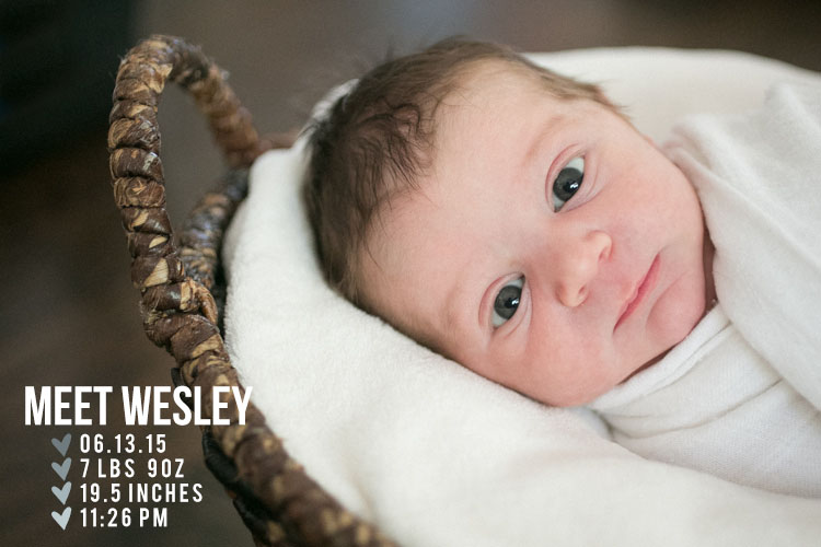 los-angeles-newborn-photographer001