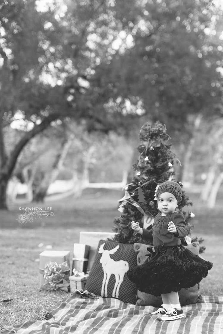 holiday themed photography
