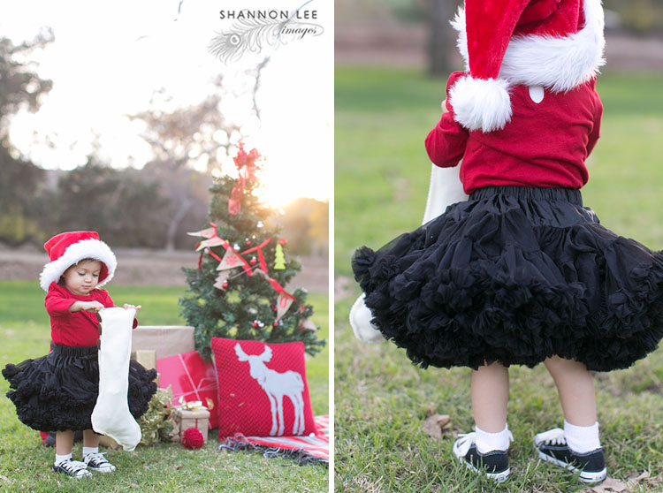 holiday family photographer los angeles