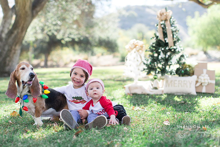 los-angeles-family-photographer-102