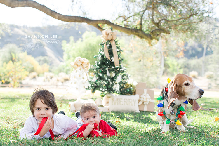 los-angeles-family-photographer-104