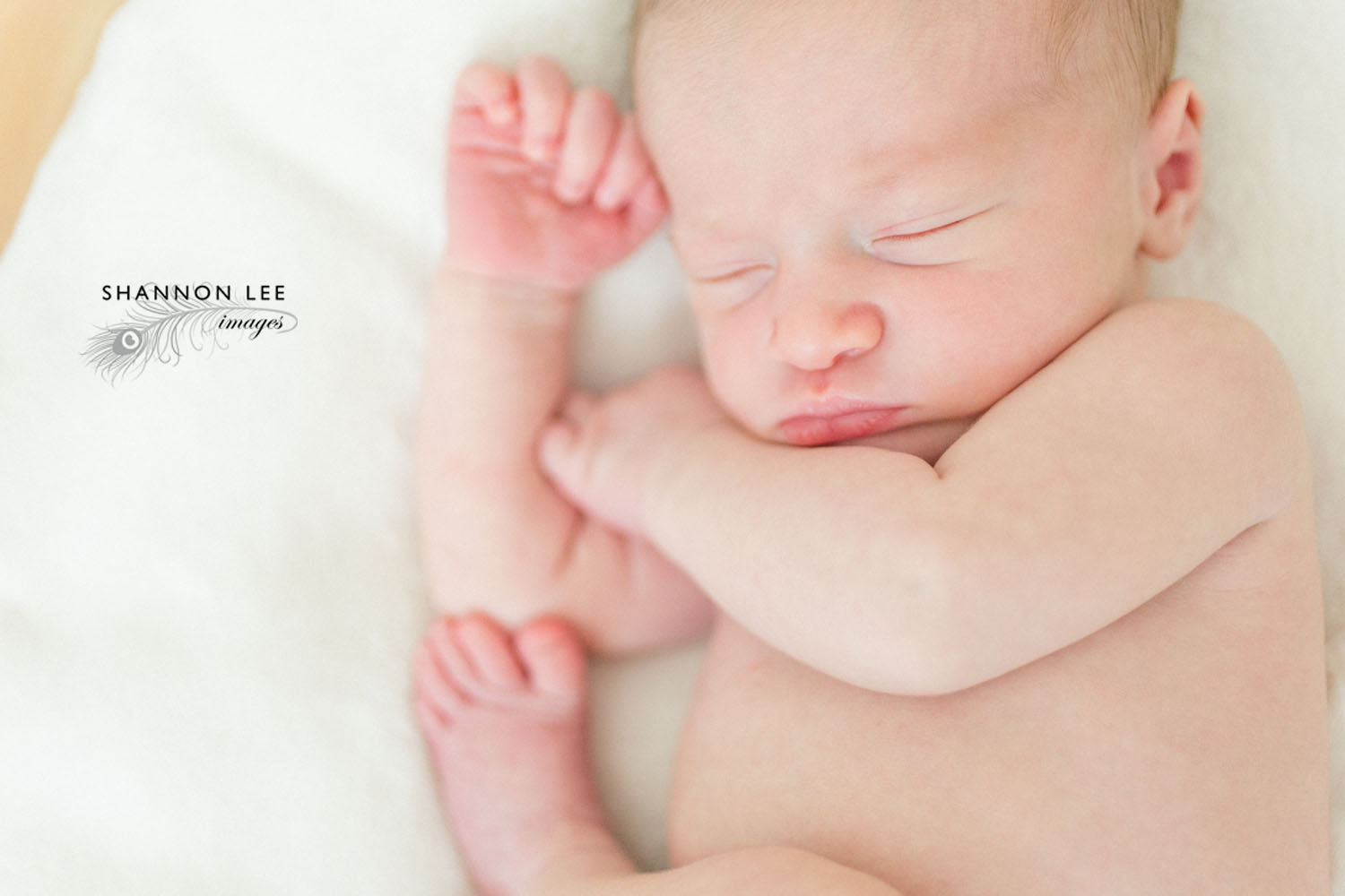 los-angeles-newborn-photographer005