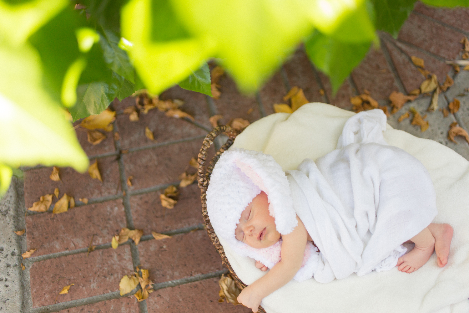 los-angeles-newborn-photographer008