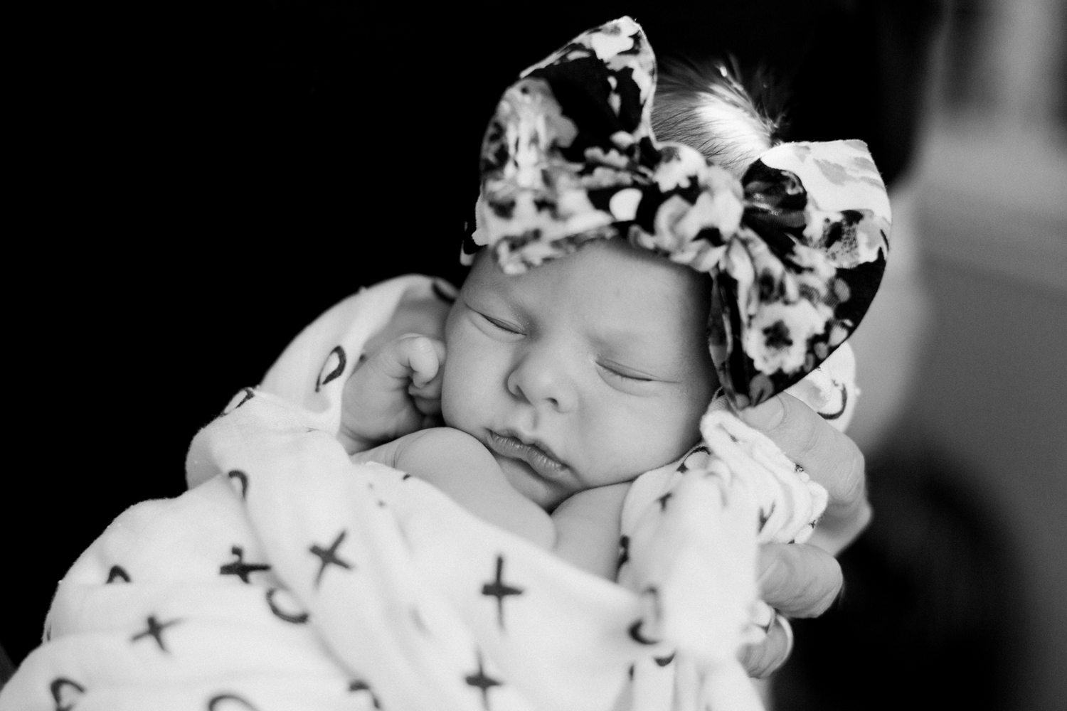 los-angeles-newborn-photographer019